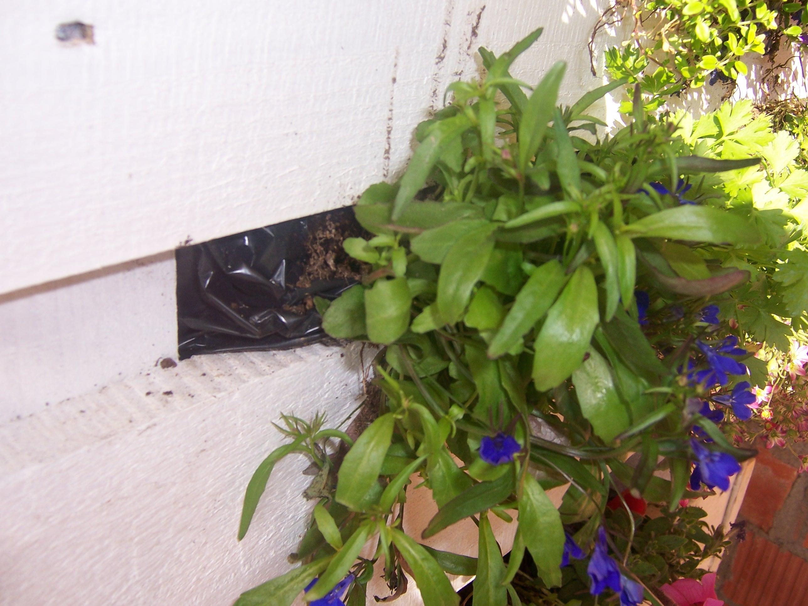 Vivere all aperto fondazionecpm - Sacchi di terra per giardino ...