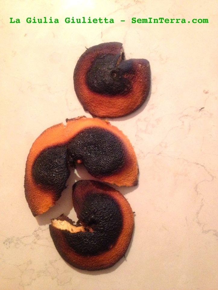 Bucce di arancia arrostite