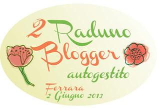 banner-raduno