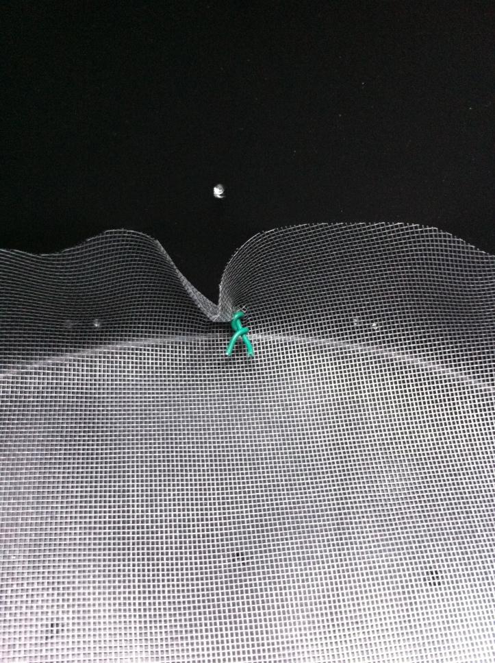foto 6 - la zanzariera tagliata per il fondo