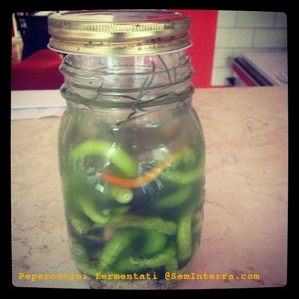 peperoncini fermentati, fermentazione