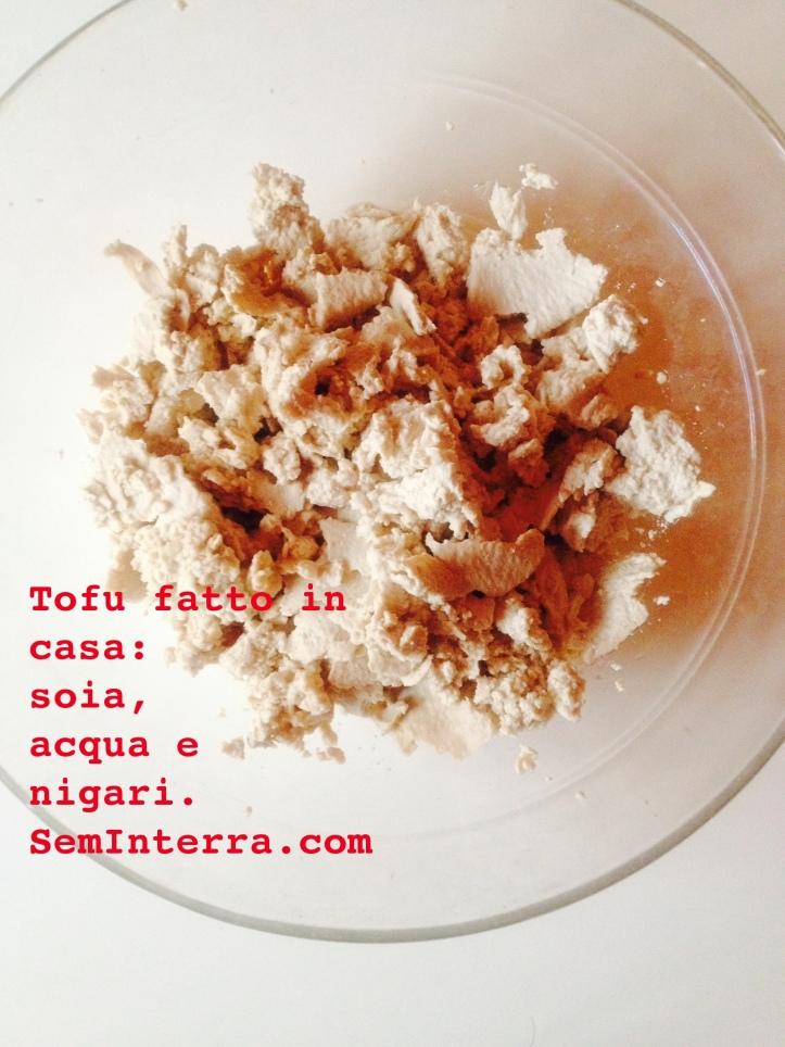 tofu fatto in casa, ricette con tofu