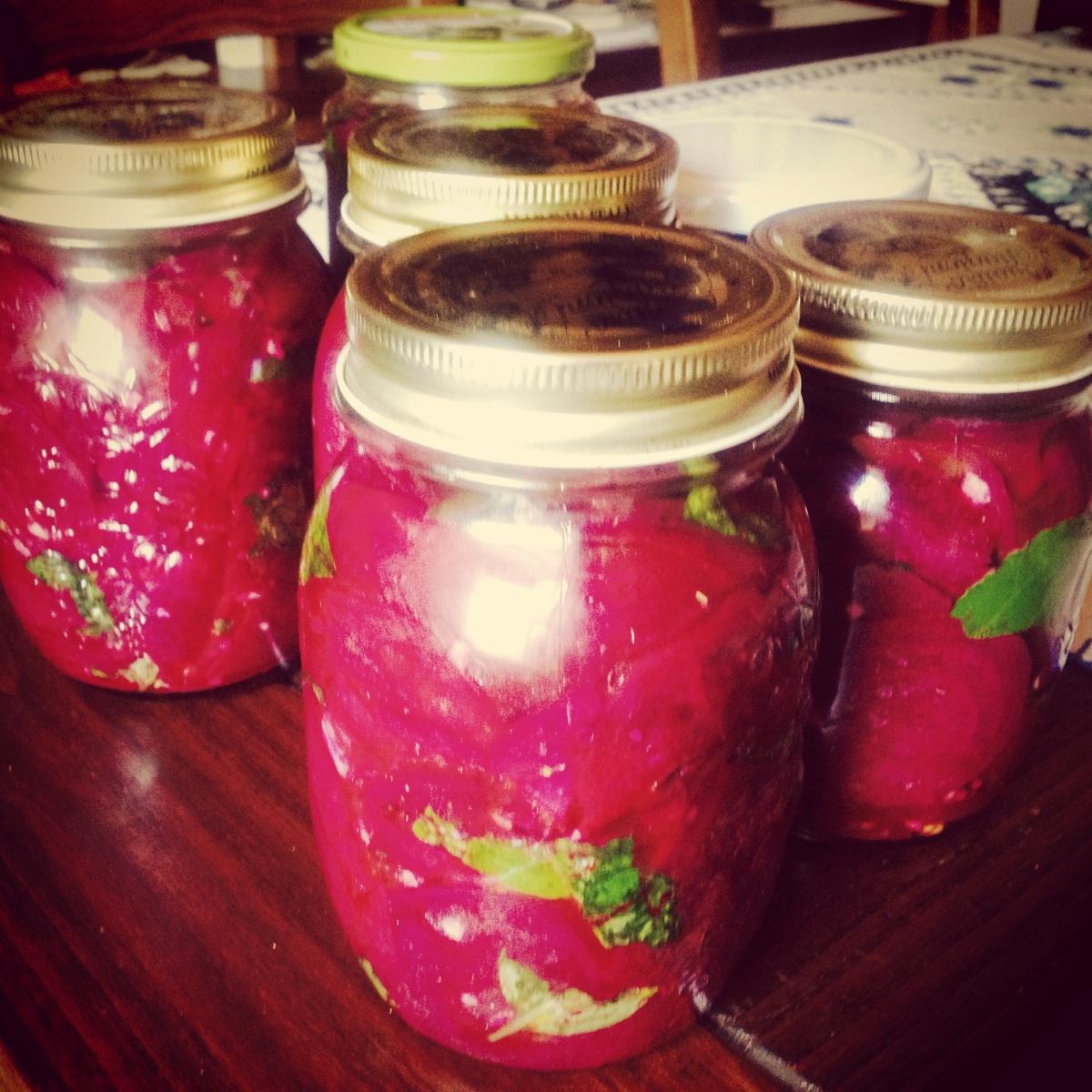 Barbabietole rosse dell'orto del babbo: come prepararle sott'olio per l'inverno (se ci arrivano)