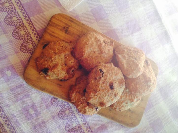 biscotti con okara, okara