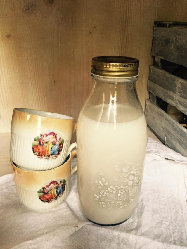 latte di canapa tofu di canapa hemp fu